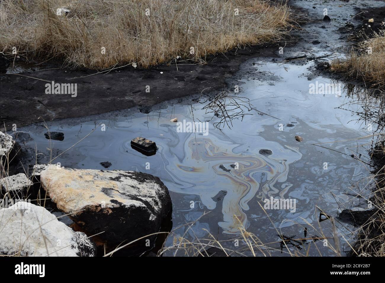 Catrame naturale acqua asfalto buca in palude zona umida. Foto Stock