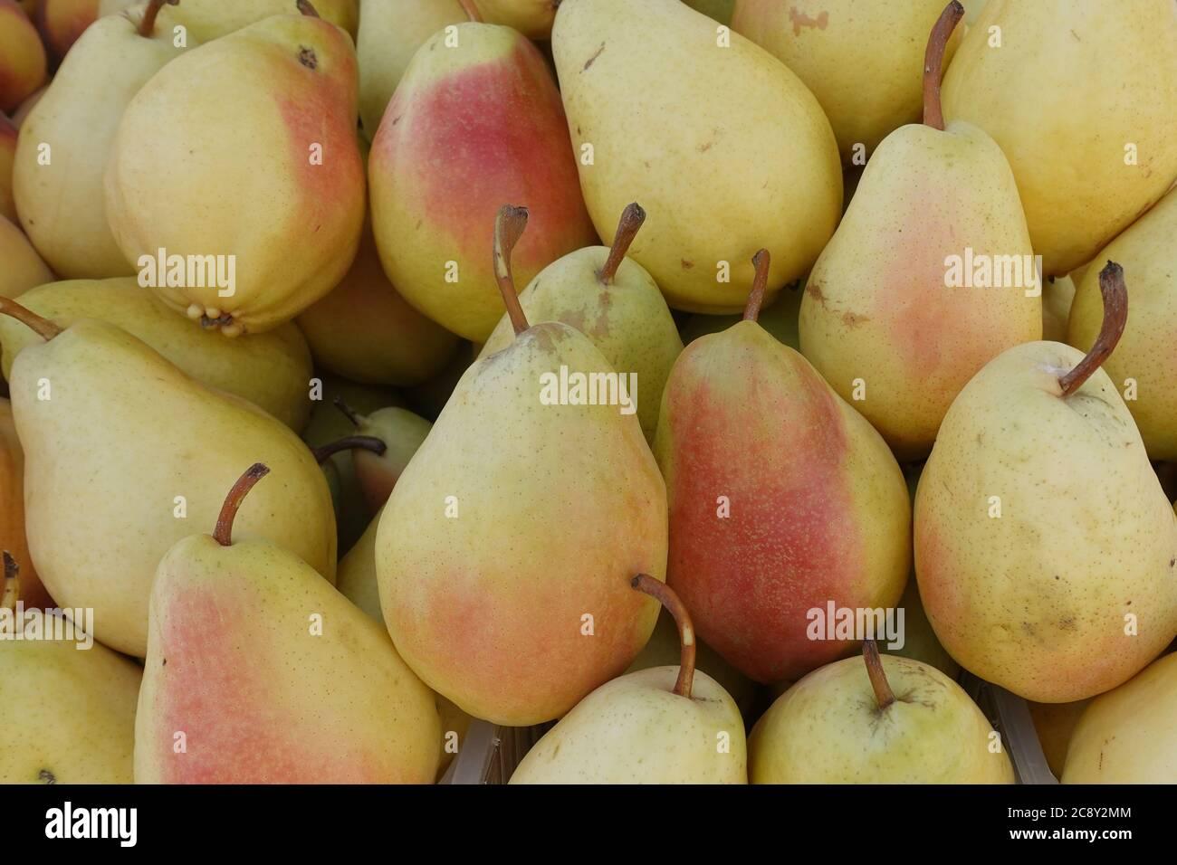 Pelo di pere rosse gialle di fondo di frutta fresca. Foto Stock