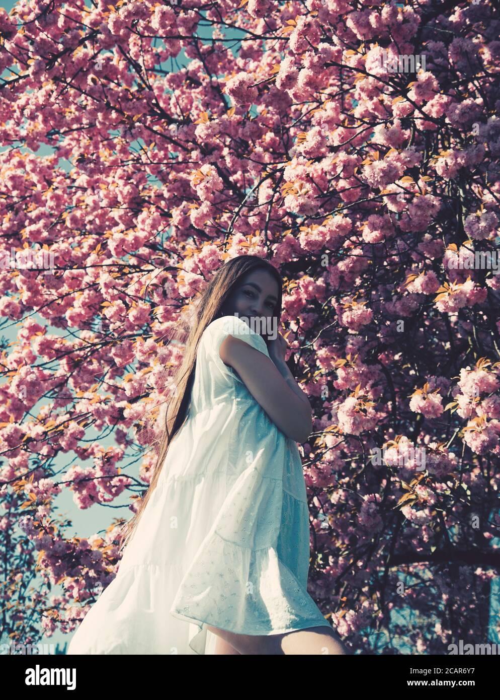 Ritratto di giovane bella donna in posa tra alberi in fiore sakura. Foto Stock