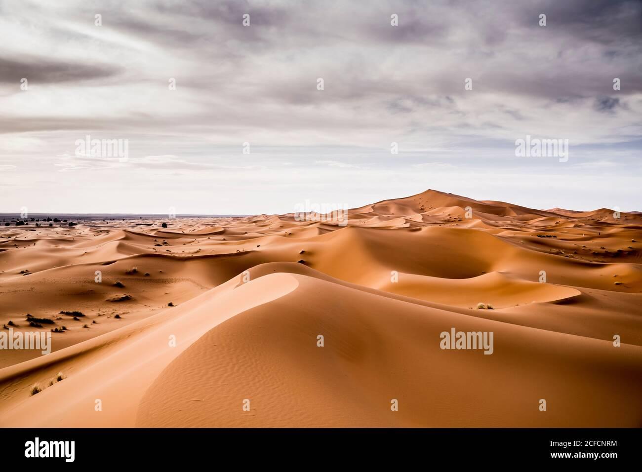 Paesaggio di deserto con colline di sabbia a Marrakech, Marocco Foto Stock