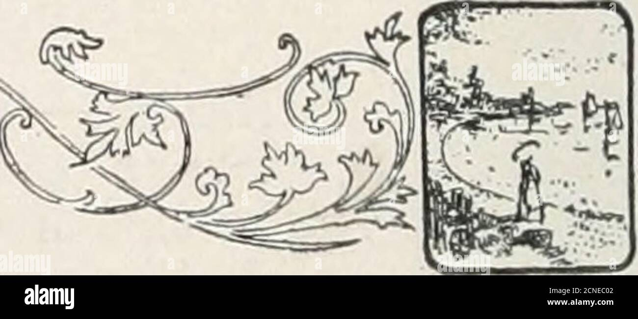 . Il libro degli uccelli : che illustra in colori naturali più di settecento uccelli nordamericani; anche diverse centinaia di fotografie dei loro nidi e uova . i^j^f^j 352. UCCELLI IN PERCHING 578. Cassins Sparrows Peuccea cassi)ii. Range.: Pianure e valli dal Texas e Arizonanorth al Kansas e Nevada. Questi uccelli si riproducono in numero su pianure tearide, mettendo i loro nidi d'erba sul terreno ai piedi di piccolo bushesor nascosto in ciuffi d'erba, e duringMay posò quattro uova bianche pure che areof the same size and indistishablefrom quelli di altri del genere. Vinci;. 579- Sparrow con alata rufosa. R Foto Stock