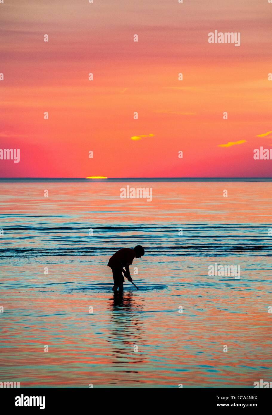 Pesca alla rete per i minnows al tramonto, Skaket Beach, Orleans, Cape Cod, Massachusetts, USA. Foto Stock
