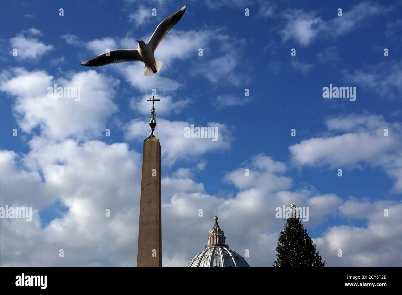 A seagull flies as Pope Francis leads the Angelus prayer from the window of the Apostolic Palace in Saint Peter's Square at the Vatican December 8, 2013. REUTERS/Alessandro Bianchi (VATICAN - Tags: RELIGION ANIMALS) Foto Stock