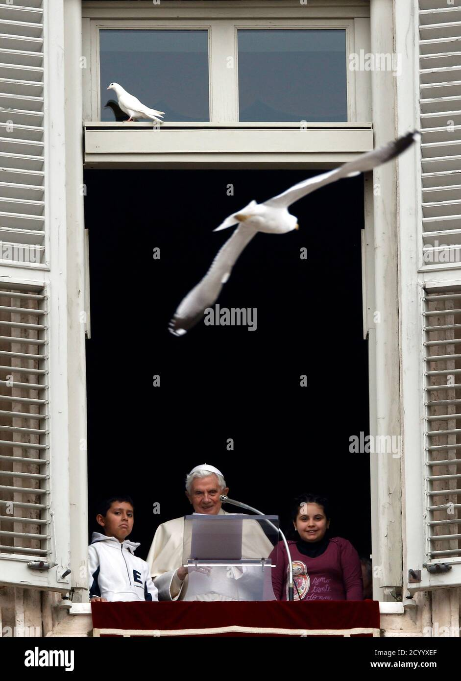 """Pope Benedict XVI and two young members of """"Azione Cattolica"""" (Catholic Action movement) look on as a seagull (top R) flies after he released doves from a window of his private apartments while leading the Angelus prayer in Saint Peter's Square at the Vatican January 29, 2012. REUTERS/Alessandro Bianchi (VATICAN - Tags: RELIGION) Foto Stock"""