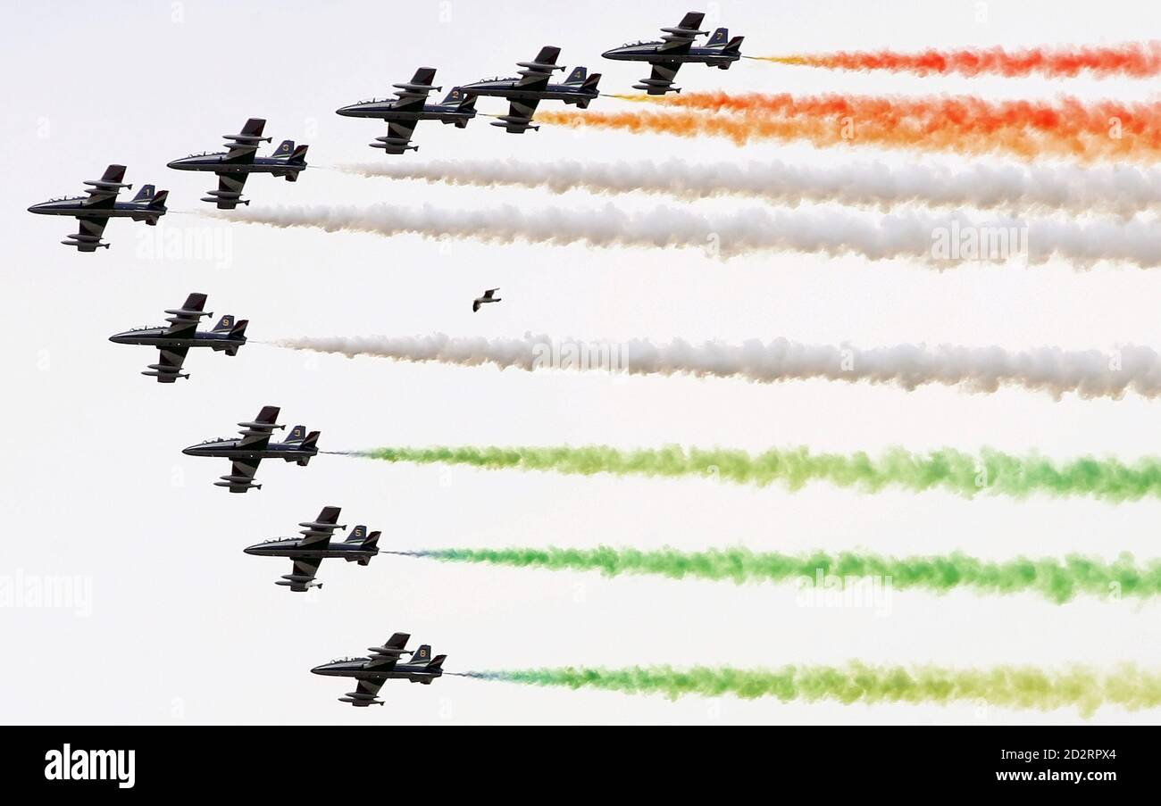 Un gabbiano (C) vola nel cielo mentre la squadra acrobatica italiana delle Freccie Tricolori si esibisce per il 60° anniversario della fondazione della Repubblica a Roma il 2 giugno 2006. REUTERS/Alessandro Bianchi (ITALIA) Foto Stock