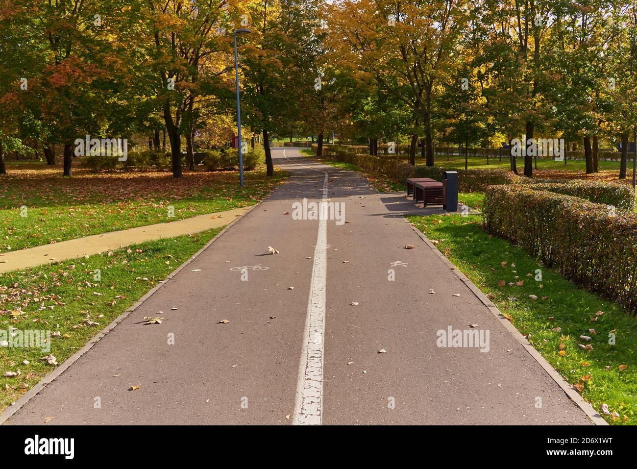 Strada asfaltata nel Parco, divisa da indicazioni sulle parti pedonali e ciclabili. Foto Stock