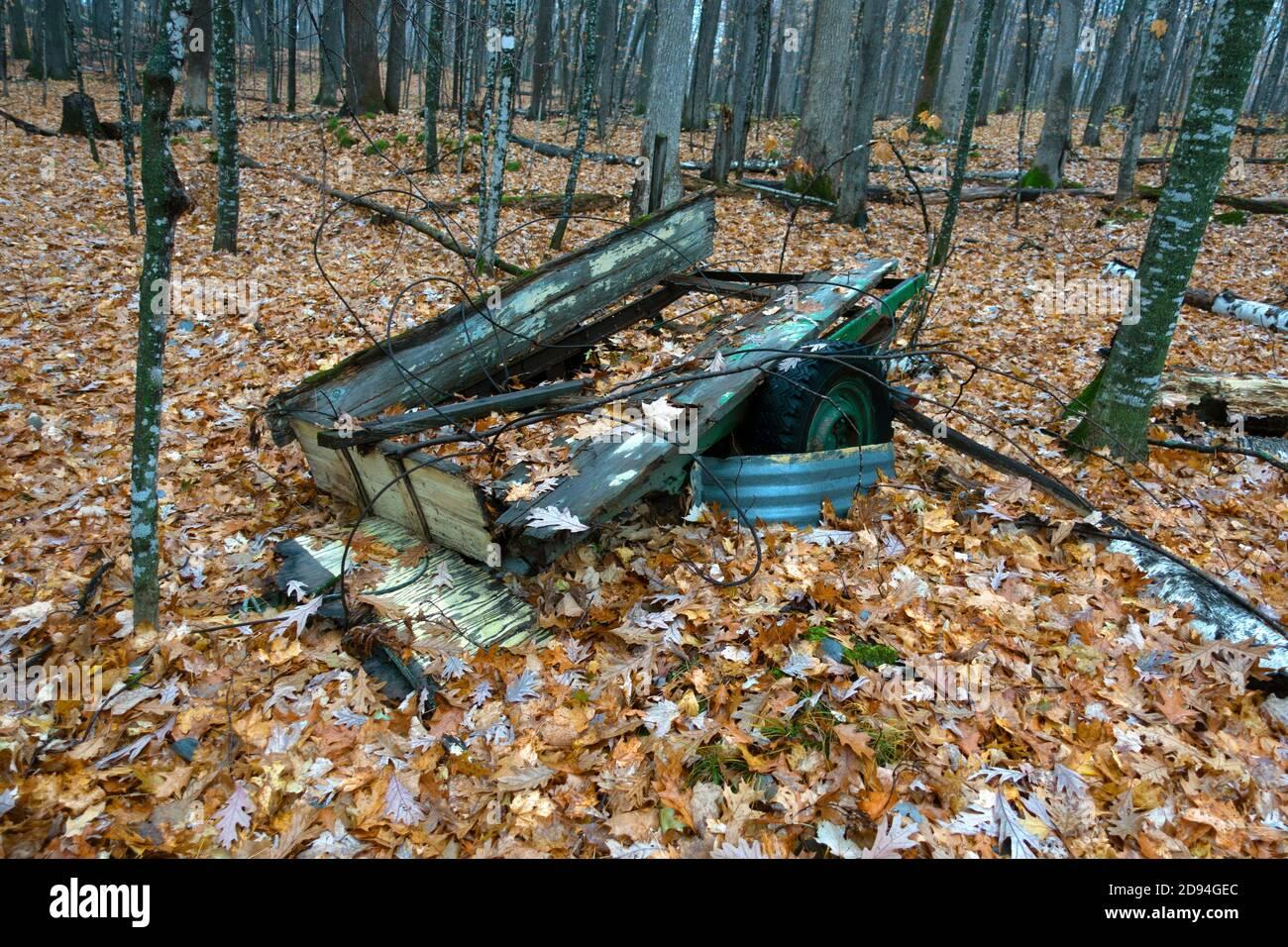 Rimorchio collassato seduto nel bosco. Cumberland, Wisconsin, Stati Uniti Foto Stock