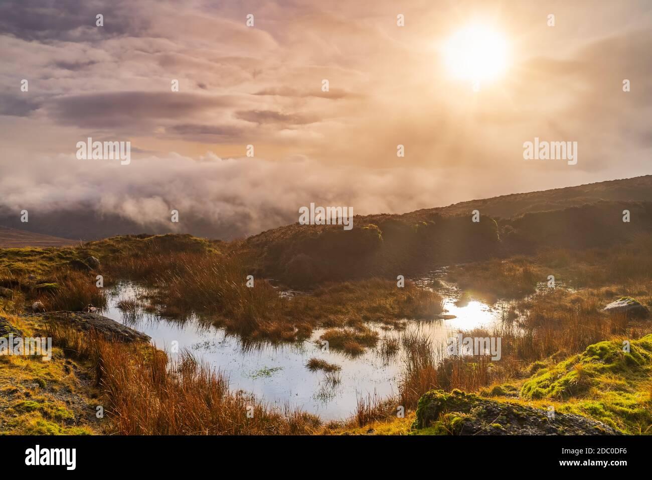 Nebbia, nebbia e cielo drammatico su una palude o palude con il sole che si riflette in una pozza. Suggestivo paesaggio delle montagne di Wicklow, Irlanda Foto Stock