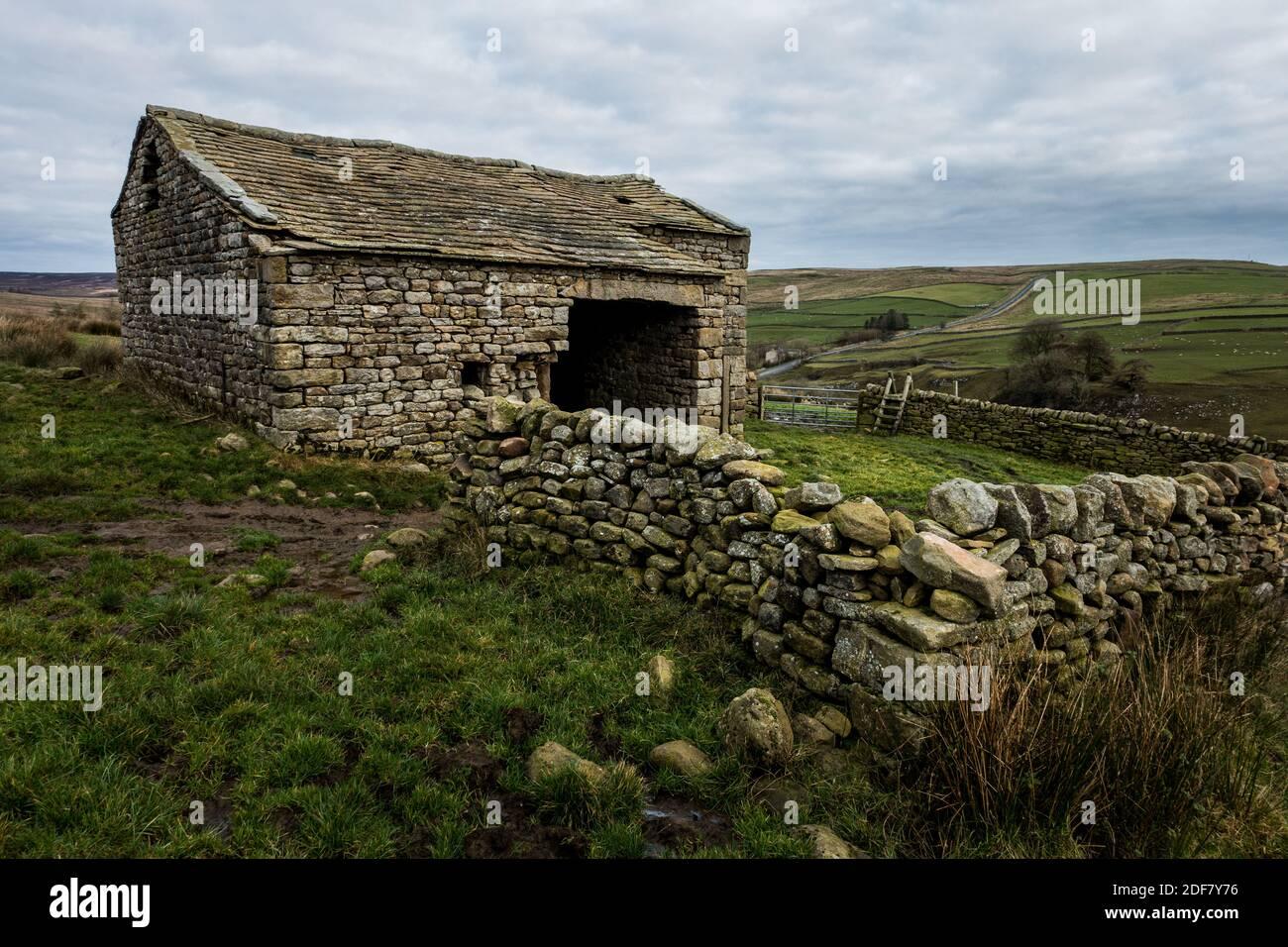 Vecchio fienile di pietra con stile di legno e la B6265 sullo sfondo vicino a Hebden e Burnsall, Yorkshire Dales National Park, North Yorkshire, Eng Foto Stock
