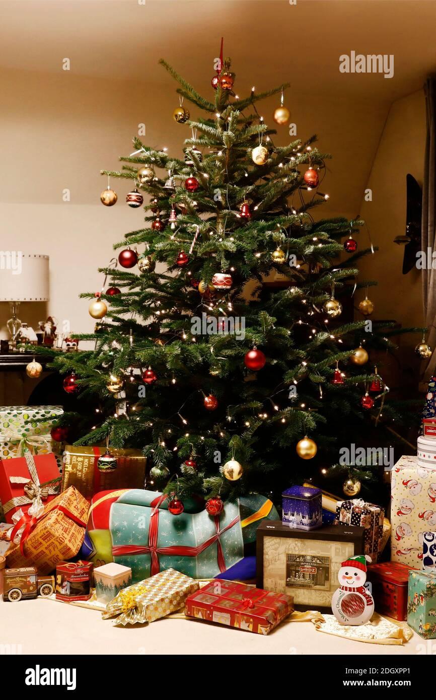 Tempo di avvento con Dany Michalski. Foto esclusive con il modello Katey come pacchetto di Natale per la pittura del corpo a Einbeck il 6 dicembre 2020 - artista della pittura del corpo: Joerg Duesterwald Foto Stock