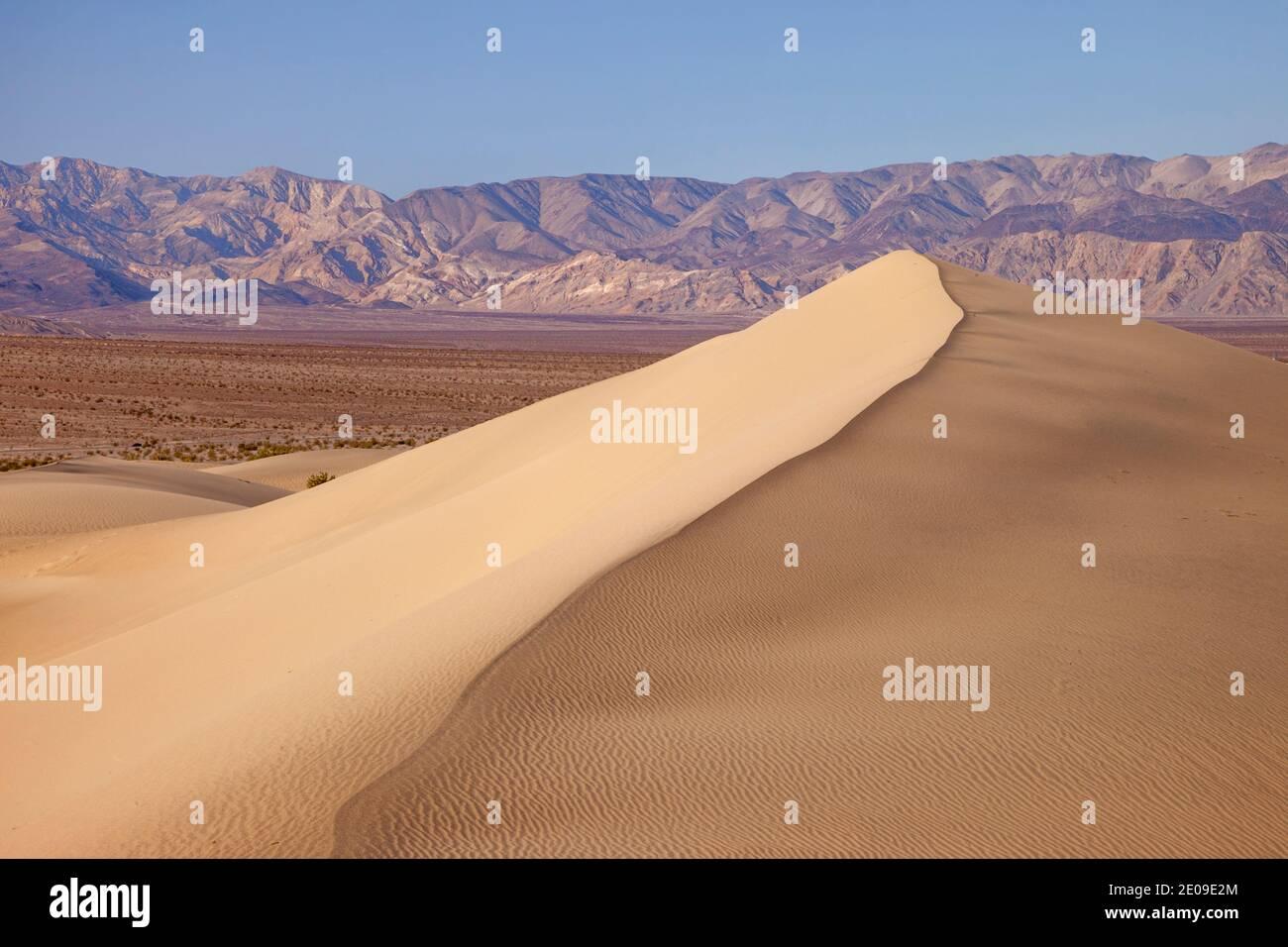 Mesquite Dunes a tubo da stufa di pozzi, Parco Nazionale della Valle della Morte, California USA Foto Stock