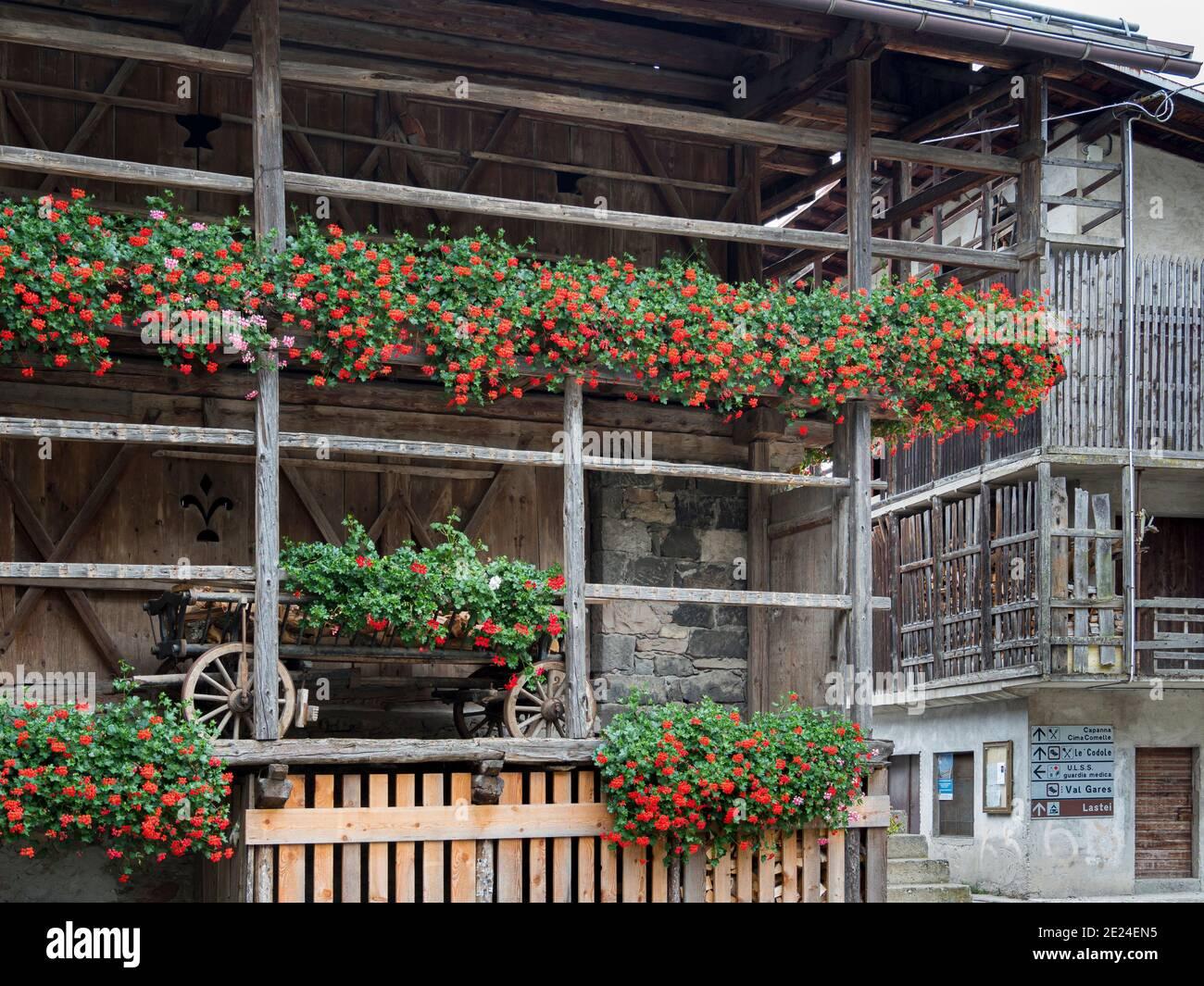 Canale d'Agordo, tradizionale architettura alpina nella Val Biois . Europa, Europa centrale, Italia Foto Stock