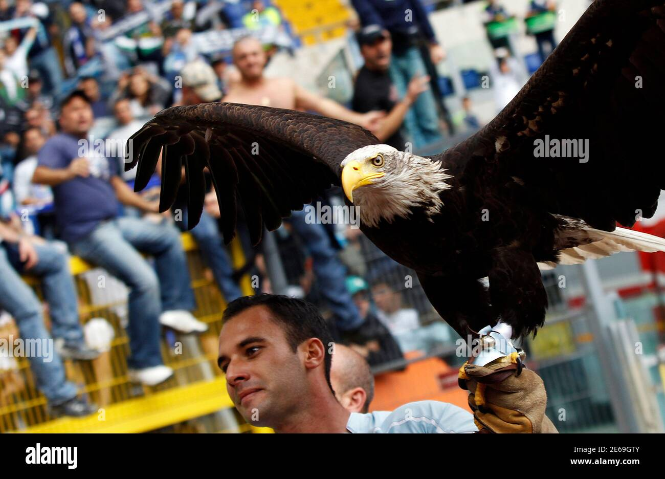 Olympia the eagle, Lazio's mascot who flies around the stadium in a pre-match routine, is carried around before their Italian Serie A soccer match against AS Roma at the Olympic stadium in Rome November 7, 2010.  REUTERS/Alessandro Bianchi (ITALY - Tags: SPORT SOCCER ANIMALS) Foto Stock