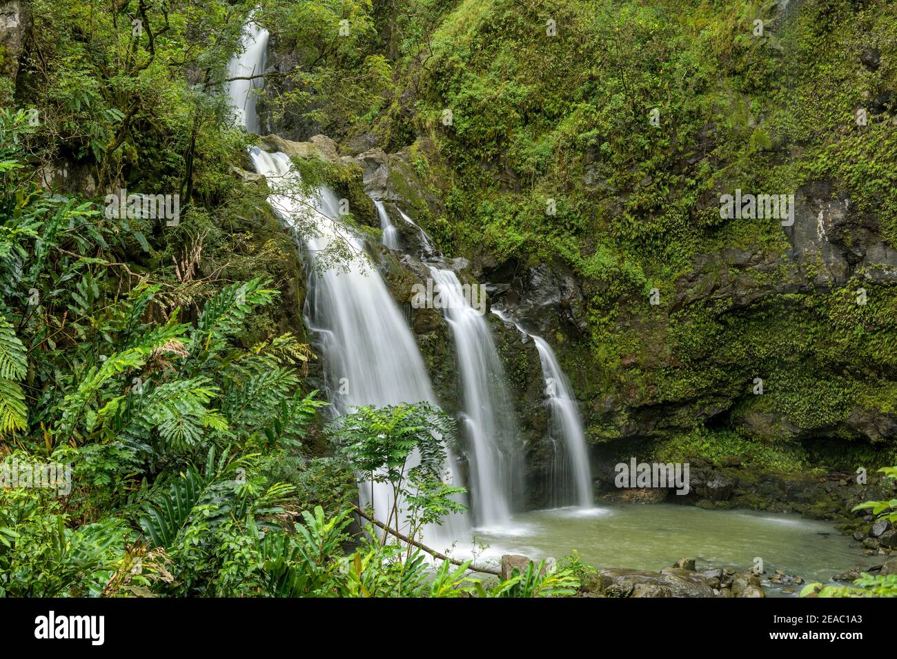 Cascate nella foresta pluviale - una vista ravvicinata di una cascata a più livelli all'interno di una fitta foresta pluviale sul lato di Road to Hana. Maui, Hawaii, Stati Uniti. Foto Stock