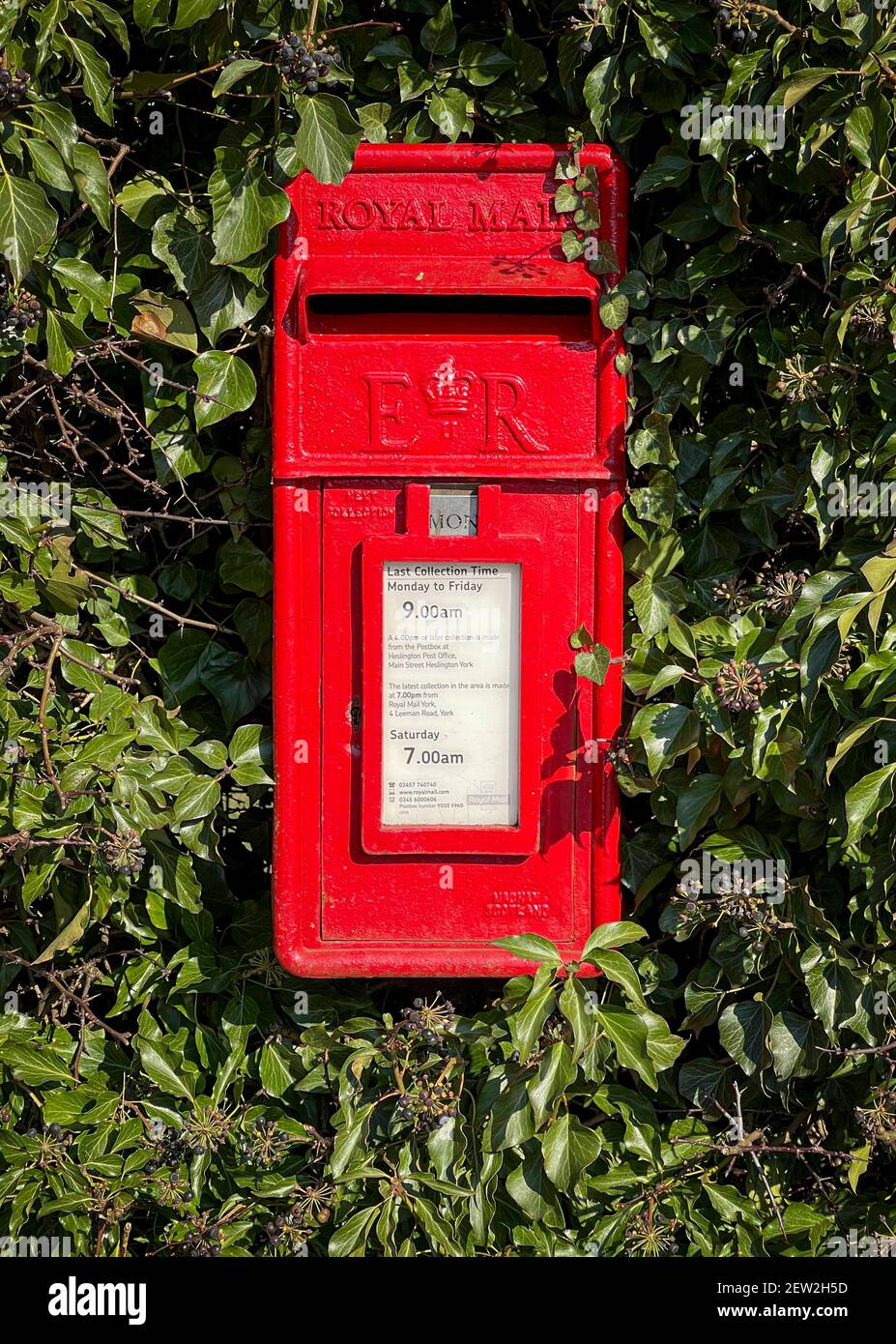 Casella postale rossa in Hedge, Heslington, York, Regno Unito Foto Stock