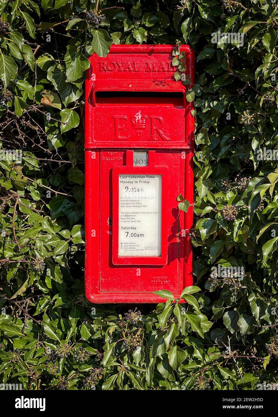 Casella postale rossa in Hedge, Heslington, York, Regno Unito Foto Stock