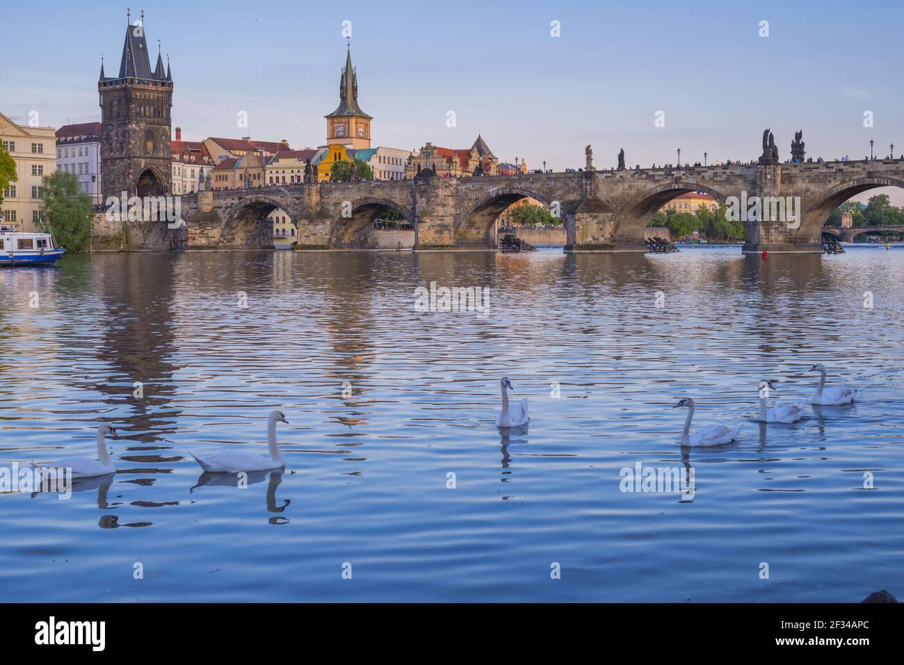 Geografia / viaggio, Czechia, Boemia, Moldava e Ponte Carlo, la torre del ponte della città vecchia, la torre dell'acqua del vecchio oversize, Praga, , Freedom-of-Panorama Foto Stock