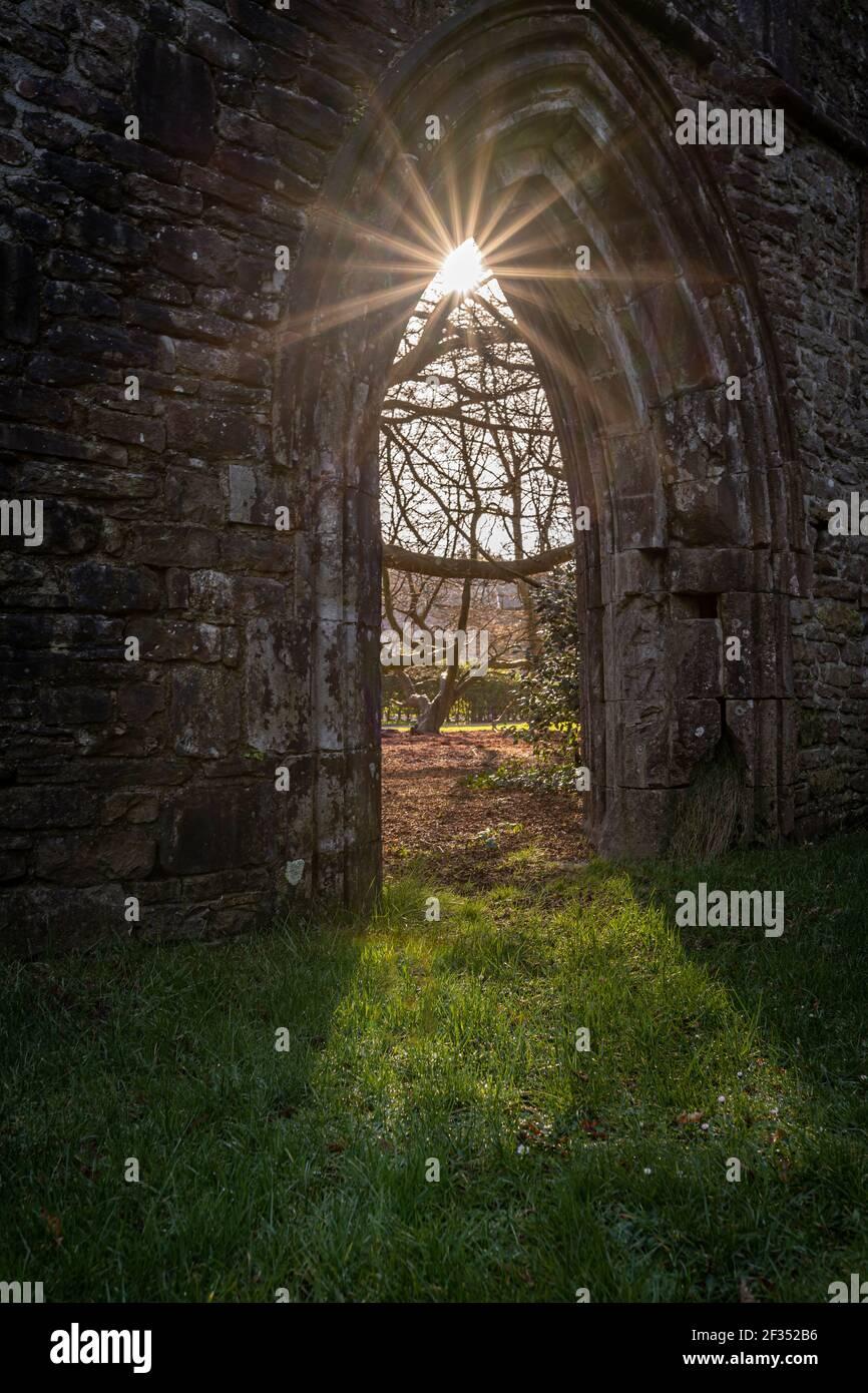 Rovine dell'abbazia di Margam, Margam Country Park, la Casa del Capitolo. Neath Port Talbot, Galles, Regno Unito Foto Stock