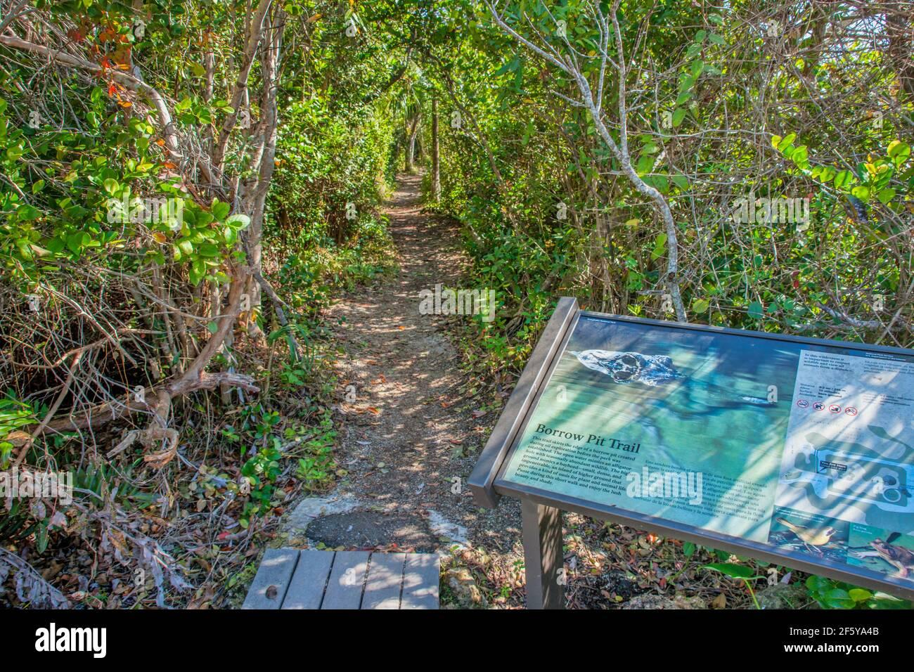 Barrow Pit Trail presso la torre di osservazione a Shark Valley nel Parco Nazionale delle Everglades in Florida. Foto Stock