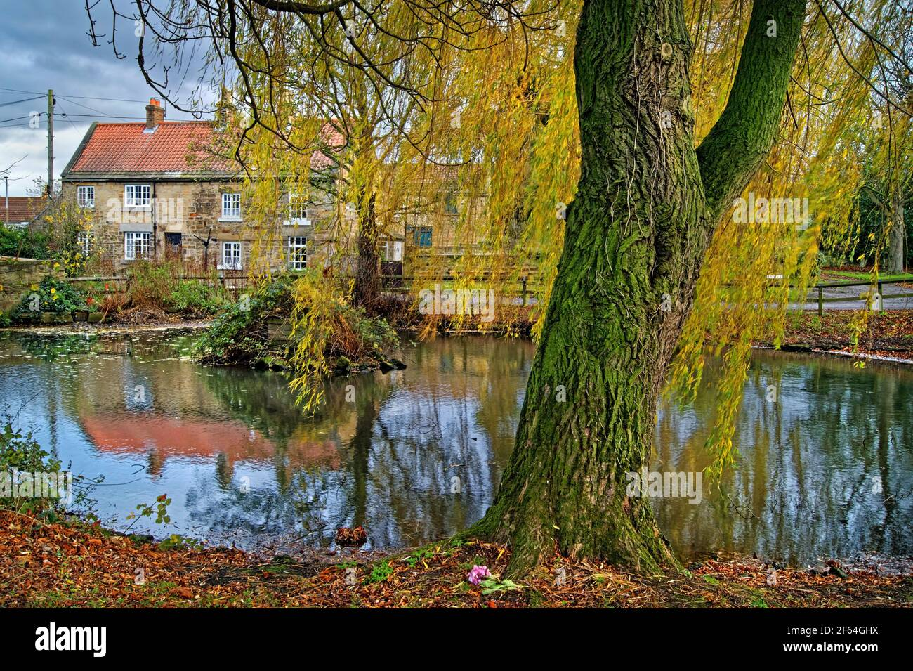 Regno Unito, South Yorkshire, Doncaster, Villaggio di Clayton con Stagno durante l'autunno Foto Stock