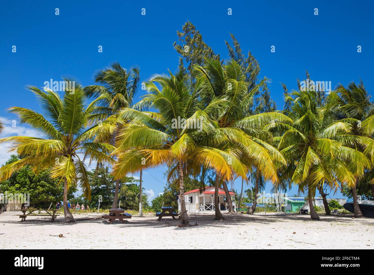 Repubblica Dominicana, Punta Cana, Parque Nacional del Este, Isola di Saona, Spiaggia al villaggio di pescatori mano Juan Foto Stock