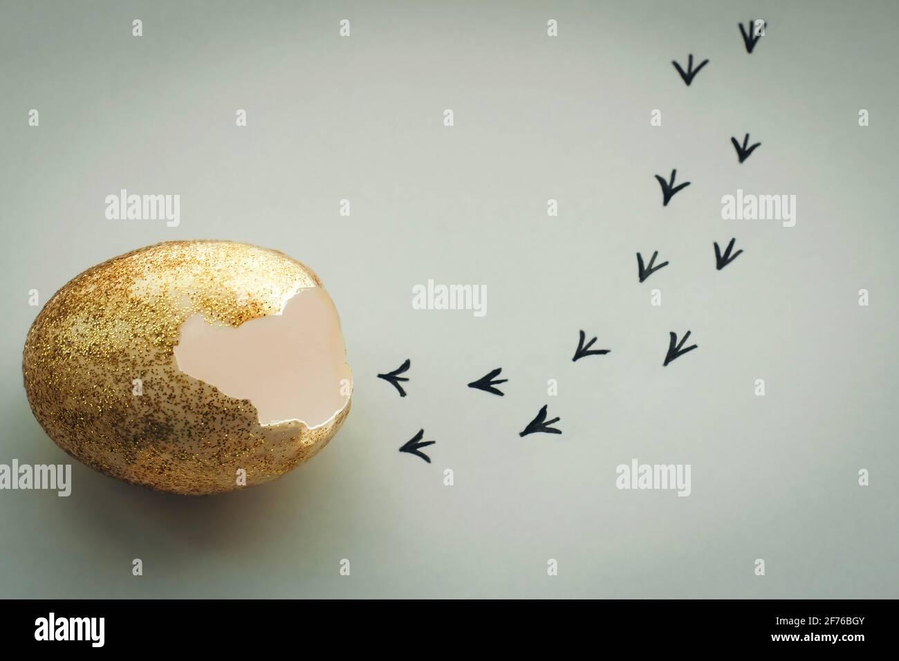 Impronte da un guscio d'uovo. Primi passi di un pulcino su uno sfondo bianco isolato. Concetto di uscita dalla zona di comfort, una nuova vita, progresso Foto Stock