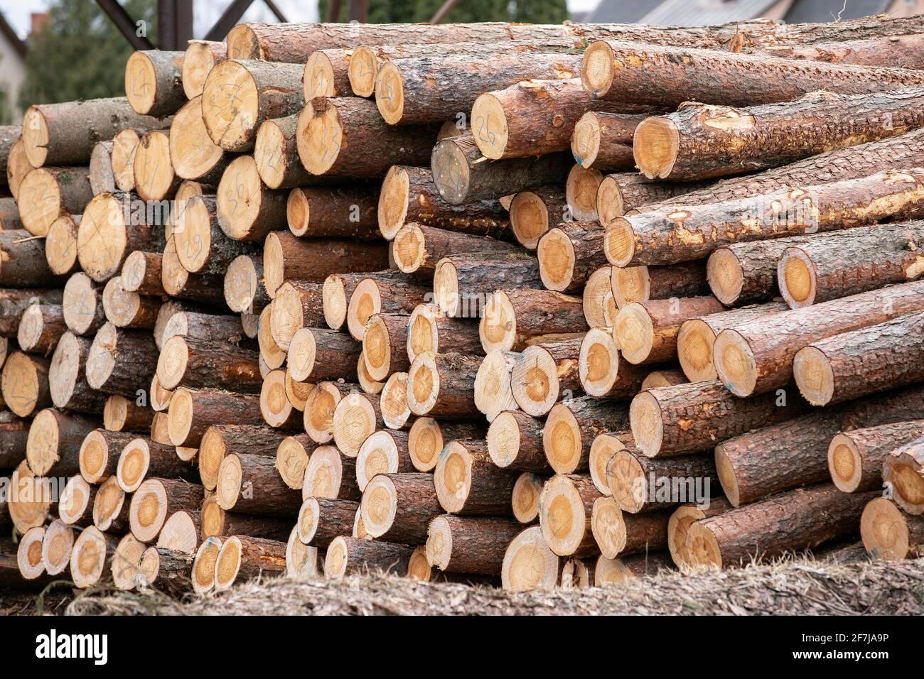 Stack di log. Produzione di legname, trasporto e consegna. Foto Stock