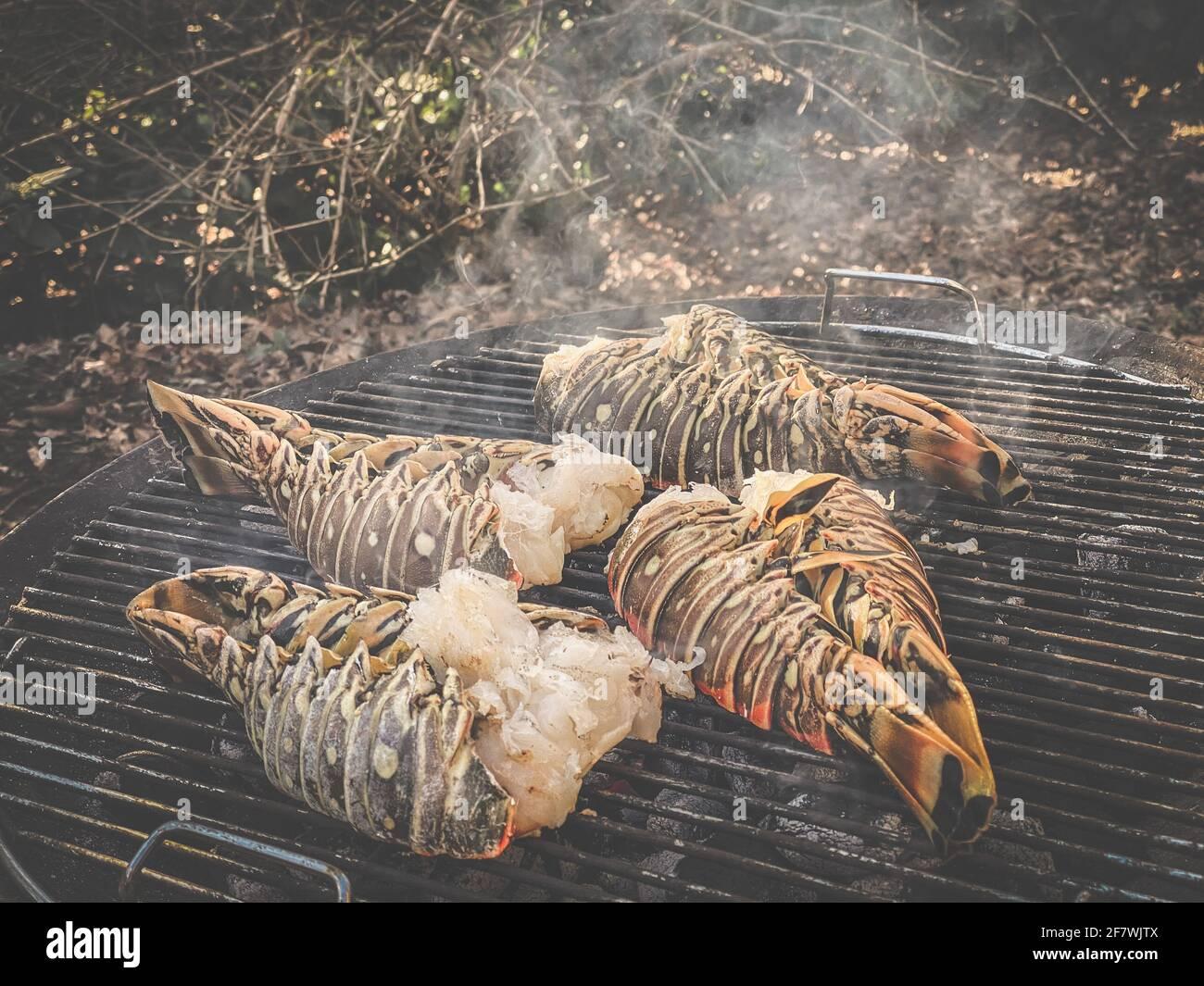 Aragoste spinose cucinate e grigliate su un barbecue in un giardino Foto Stock