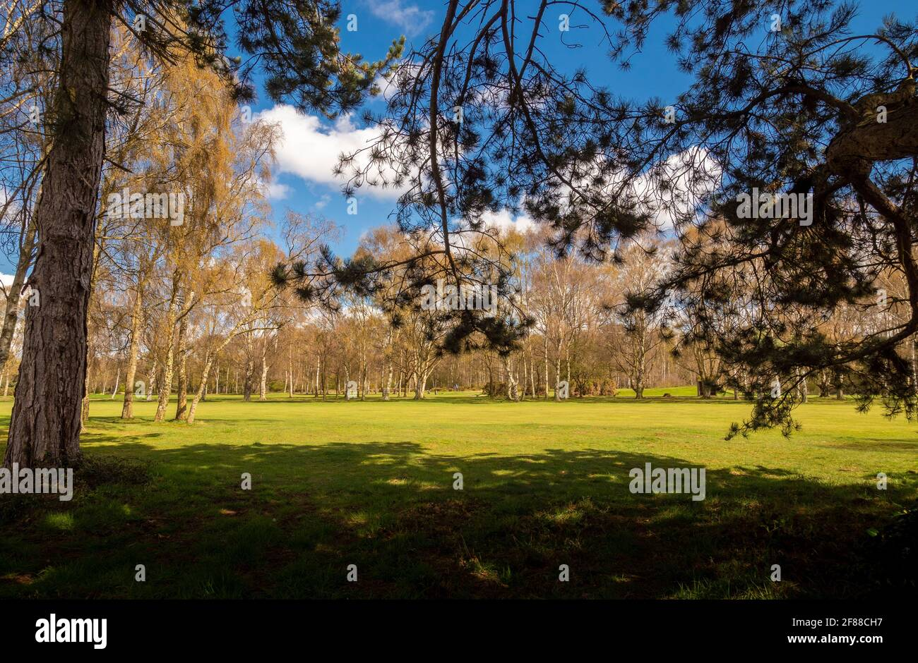 Campo da golf Fulford, York, Regno Unito Foto Stock