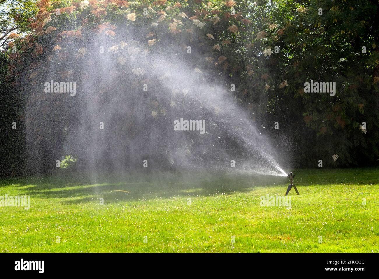Irrigazione di Prato Foto Stock