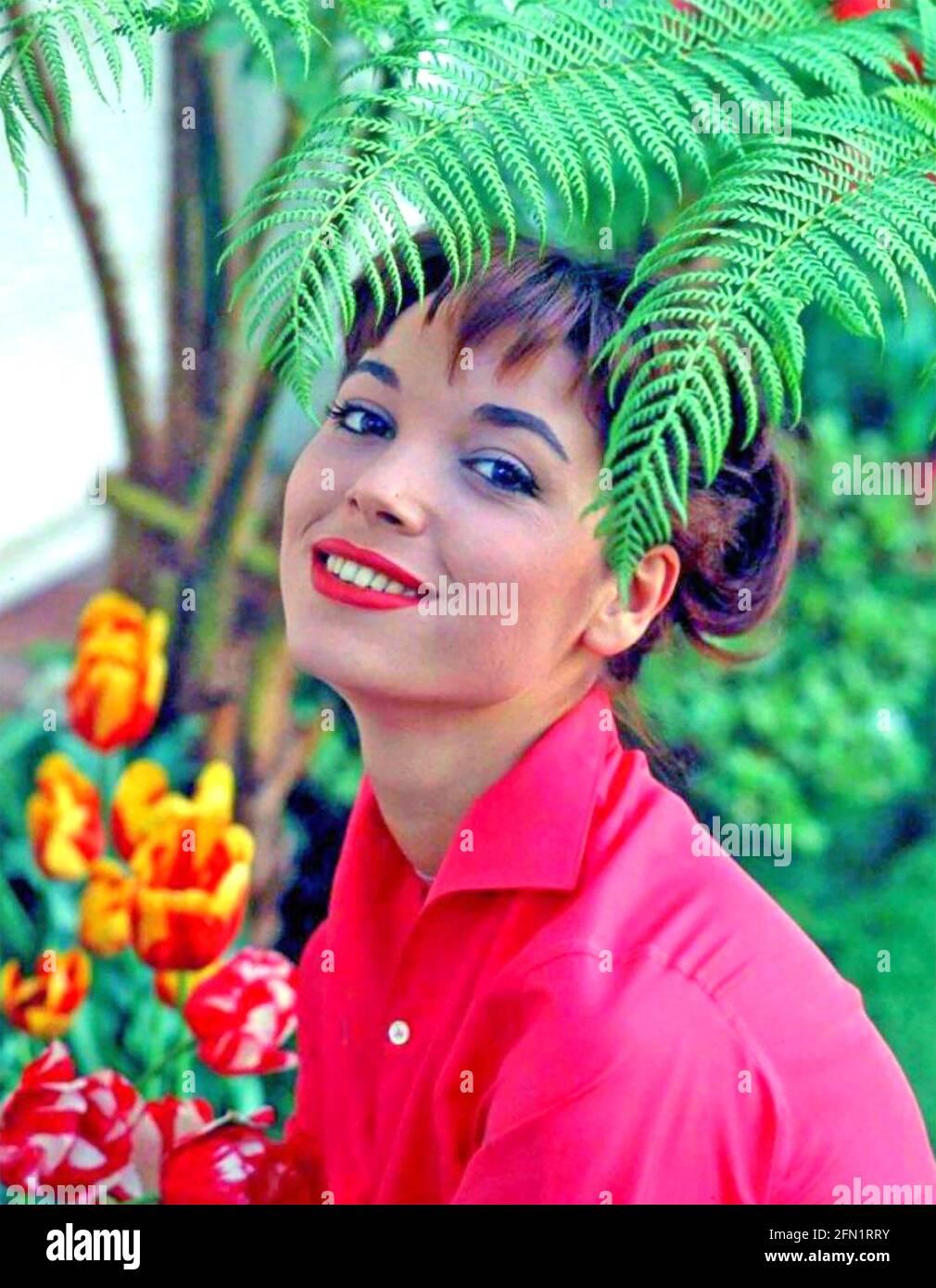 ELSA MARTINELLI (1935-2017) attrice cinematografica italiana e modello di moda 1958 Foto Stock