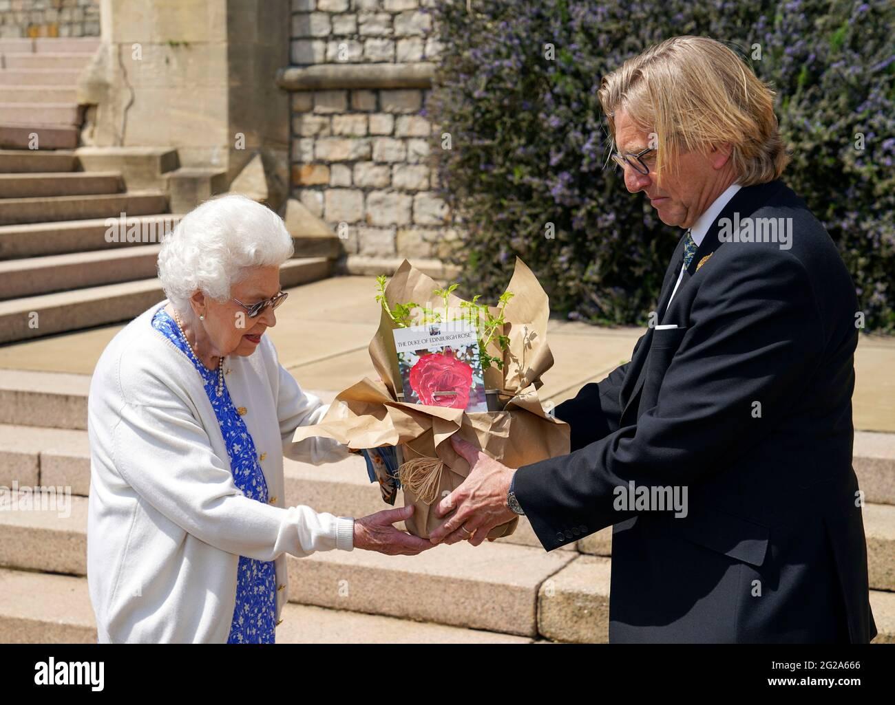 """La regina Elisabetta II riceve una rosa duca di Edimburgo, donata da Keith Weed, presidente della Royal Horticultural Society, al Castello di Windsor, Berkshire. La rosa commemorativa di Harkness Roses è stata ufficialmente chiamata in memoria del duca di Edimburgo. Una royalty derivante dalla vendita di ogni rosa andrà al premio """"Living Legacy Fund"""" del Duke of Edinburgh, che darà a più giovani l'opportunità di partecipare al premio """"Duke of Edinburgh Award"""". Data immagine: Mercoledì 2 giugno 2021. Il duca, morto nell'aprile di quest'anno, avrebbe festeggiato il suo centesimo compleanno su Ju Foto Stock"""