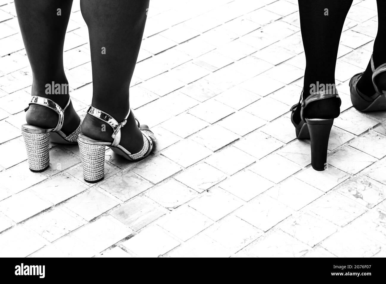 Donne voluminose con tacchi da festa. Immagine monocromatica. Foto Stock