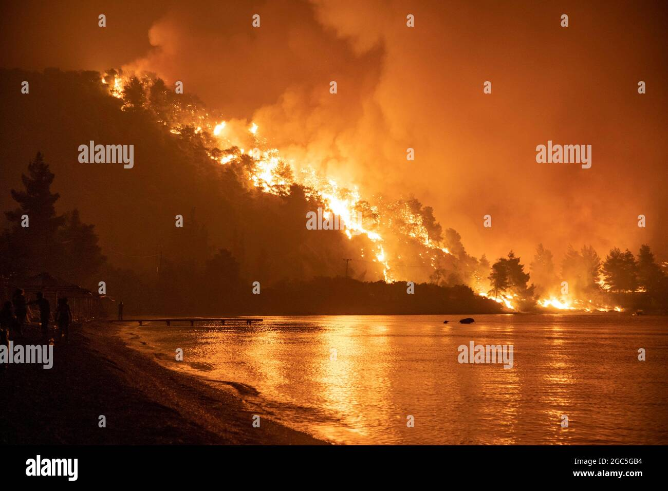 Le fiamme si innalzano come un fuoco selvatico brucia nel villaggio di Limni, sull'isola di Evia, Grecia, 6 agosto 2021. Foto scattata il 6 agosto 2021. REUTERS/Nicolas Economou Foto Stock