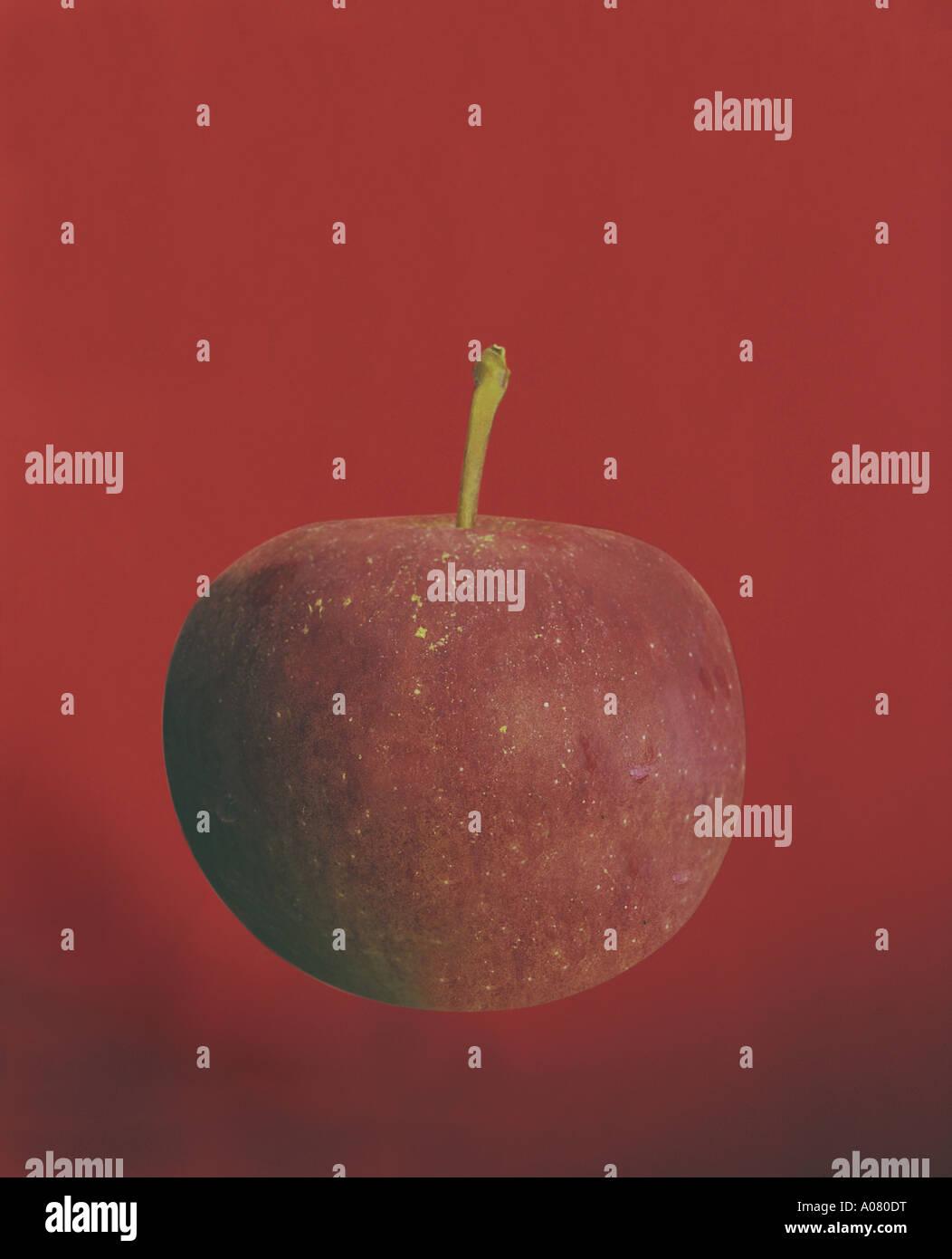 Apple Rosso Su Sfondo Rosso Di Un Oggetto Immagine Per Inverno