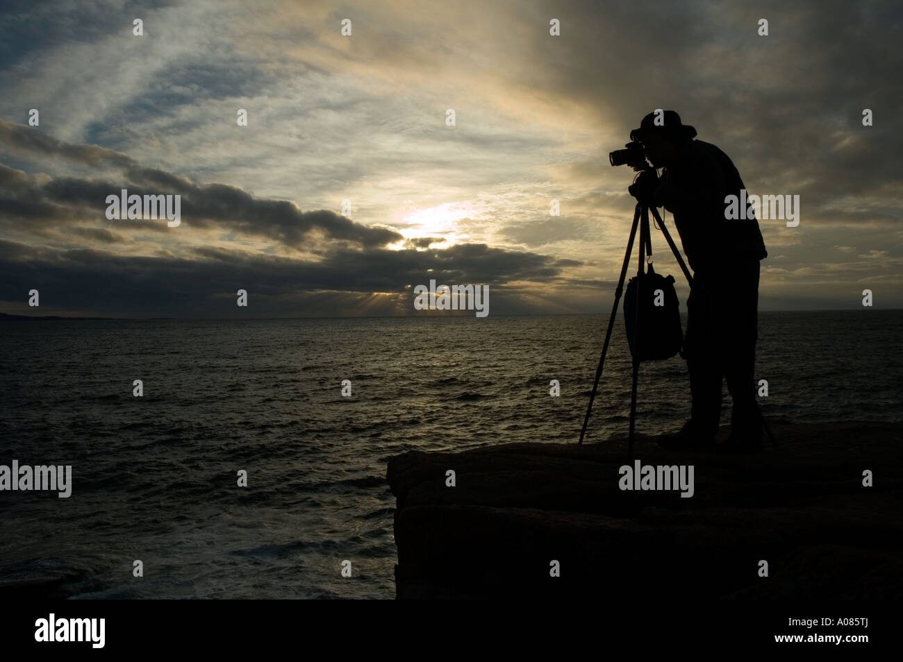 Fotografo la mattina presto Acadia Nat Park ME Immagini Stock