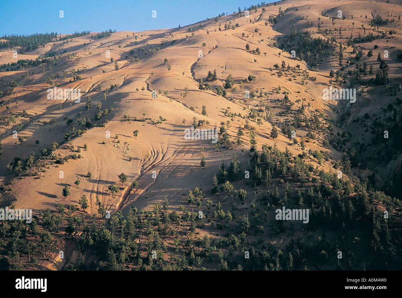 La deforestazione e la conseguente erosione, Adana Turchia Immagini Stock