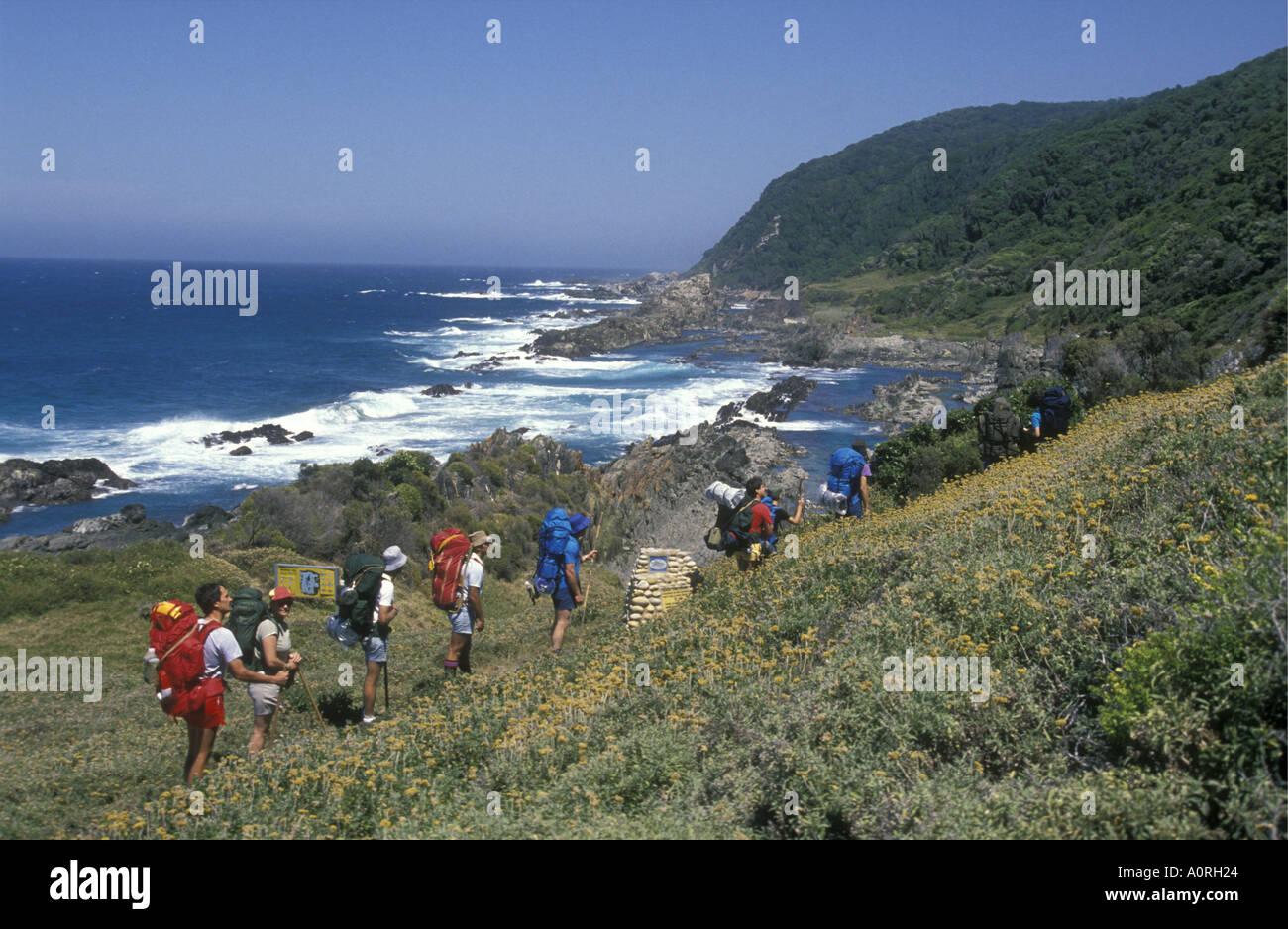 White turisti o visitatori a piedi lungo il sentiero di lontra nel giardino della natura Valle Provincia del Capo Sud Africa Immagini Stock