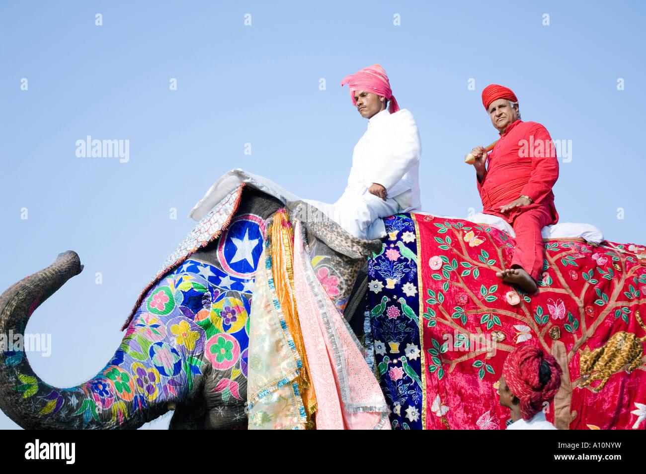 Basso angolo di visione di un giovane e un anziano uomo che cavalca un elefante, elefante Festival, Jaipur, Rajasthan, Immagini Stock