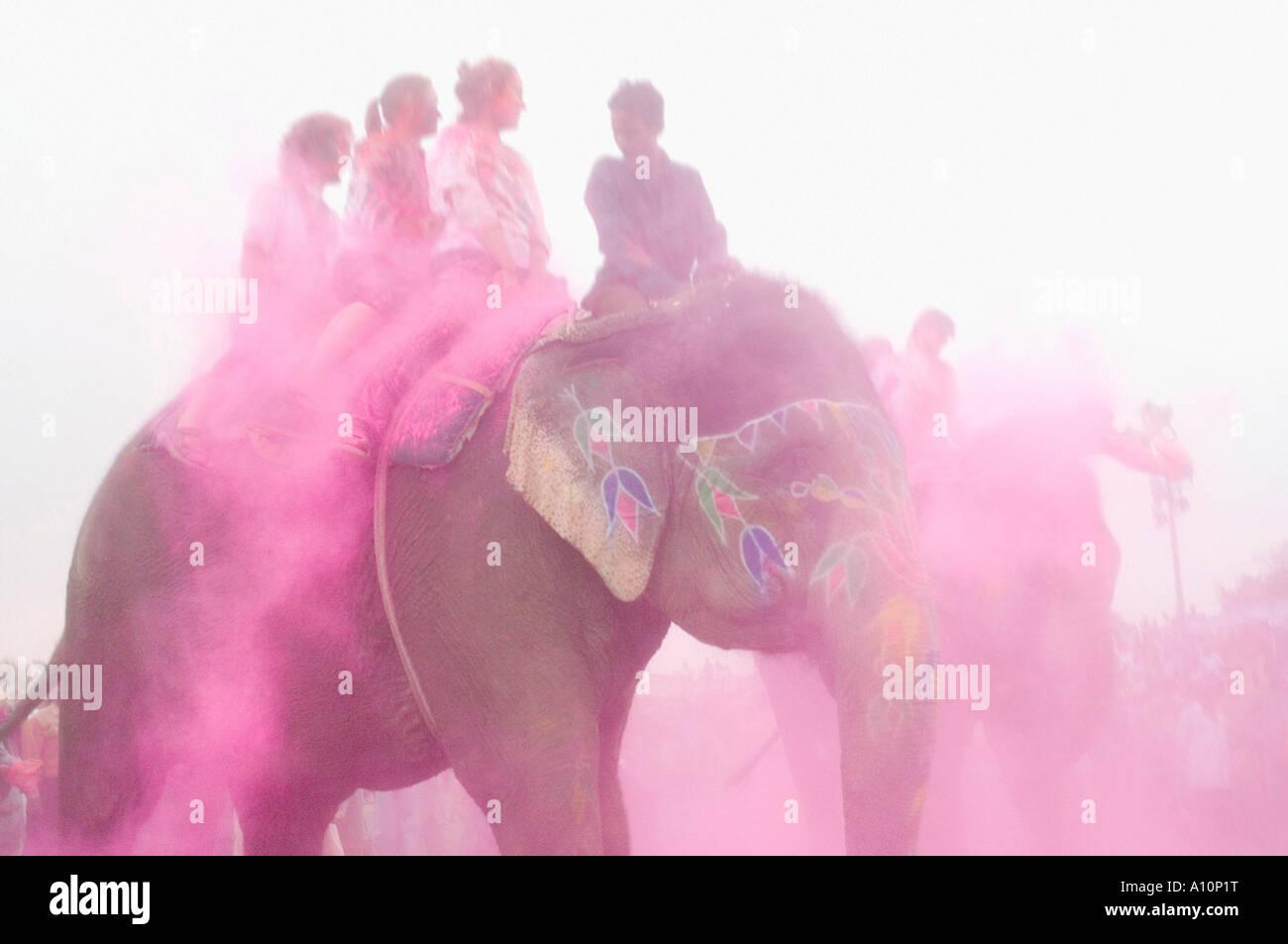 Gruppo di persone a cavallo di Elefanti Elefante, Festival, Jaipur, Rajasthan, India Foto Stock