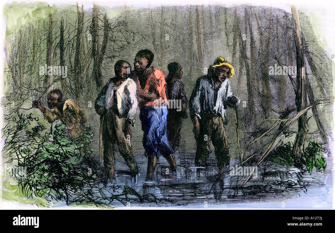La fuoriuscita di schiavi per il Nord attraverso paludi meridionali ci durante la Guerra Civile. Colorate a mano Immagini Stock