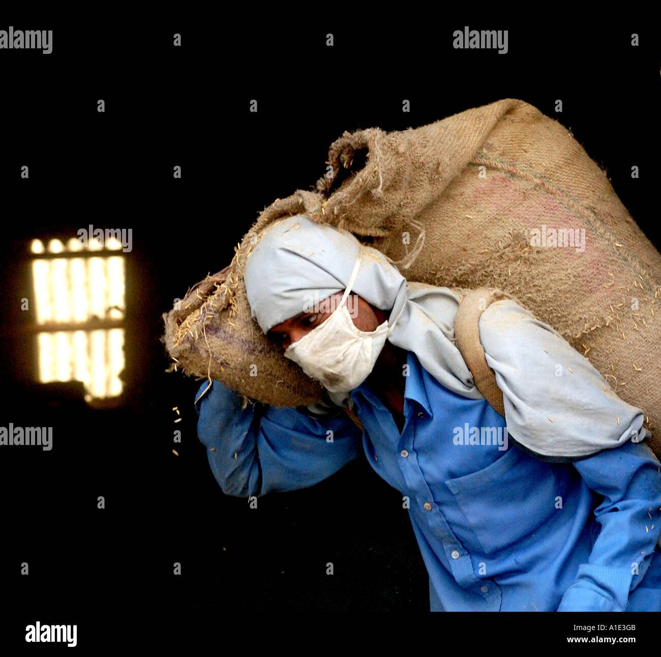 Coltivatore di riso che trasportano il sacco di riso Immagini Stock