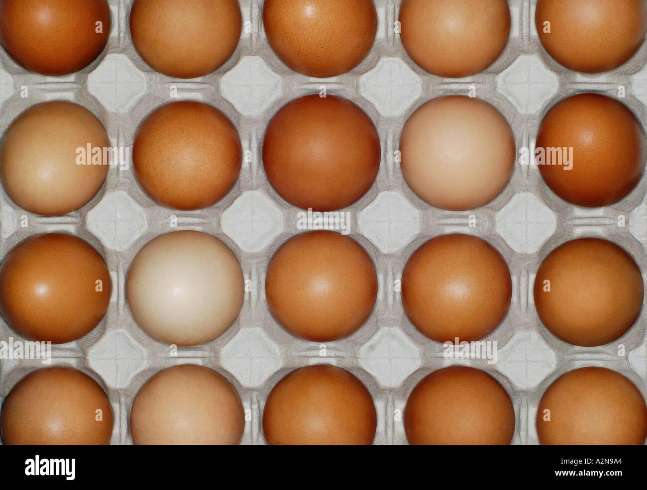 Uova sfondo in una confezione di uova Immagini Stock