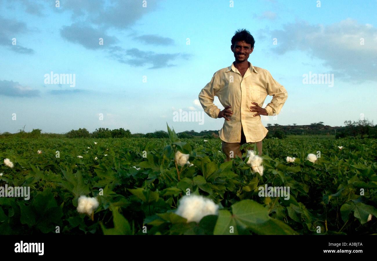 Fairtrade agricoltore dal Gujarat, India Immagini Stock