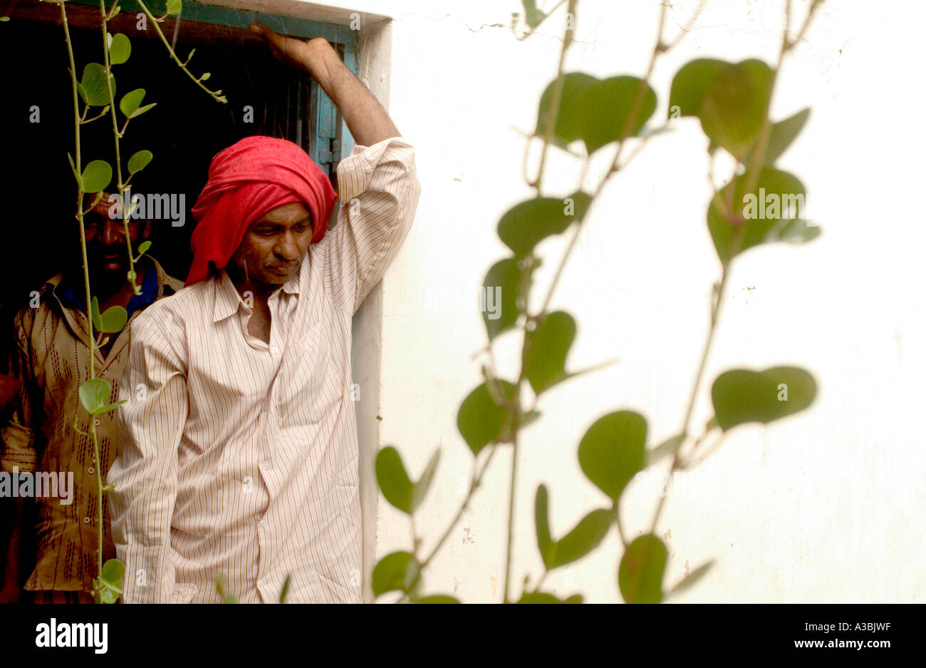Coltivatore di cotone, Gujarat, forniture di cotone Fairtrade di Marks & Spencer. Attende che la pioggia si plachi prima di lavorare nel campo Immagini Stock