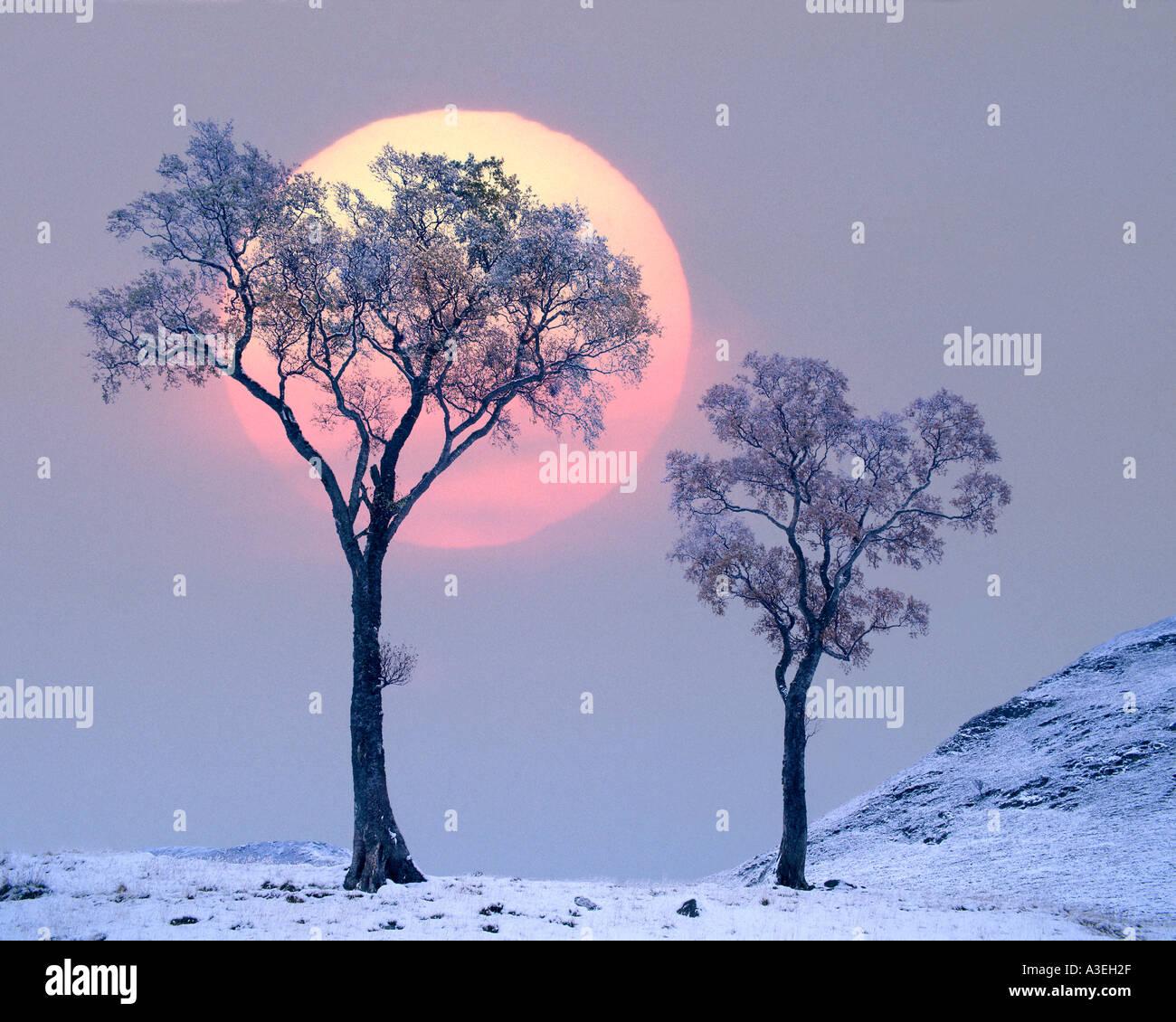 GB - Scozia: Inverno in Glen Lochsie Immagini Stock