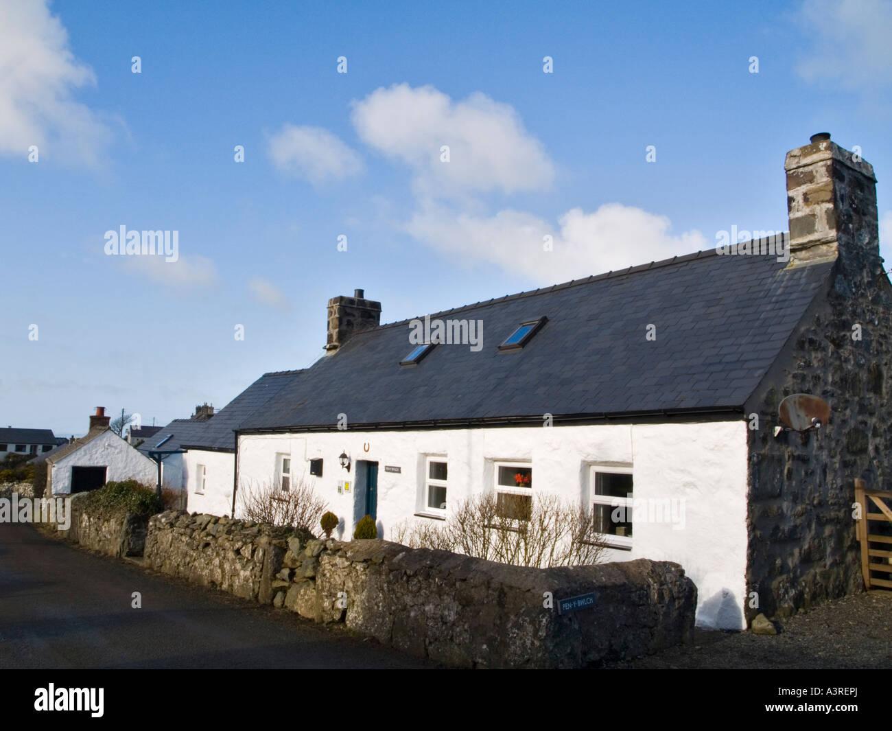 Tradizionale a singola piani bianco tradizionale lavato cottage in