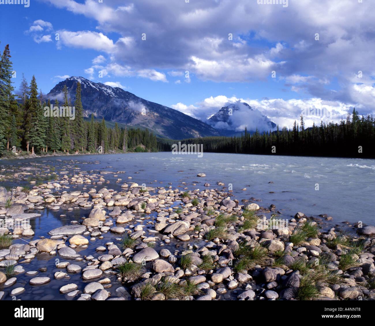 CA - ALBERTA: Fiume Athabasca nelle montagne rocciose del Parco Nazionale Immagini Stock