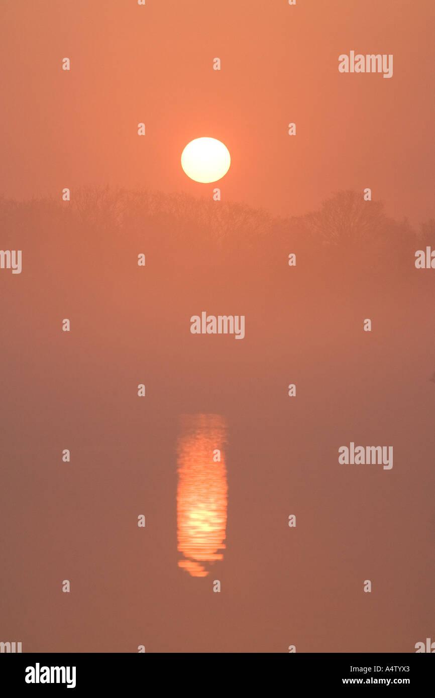 Misty Sunrise over Hickling Broad NORFOLK REGNO UNITO Foto Stock