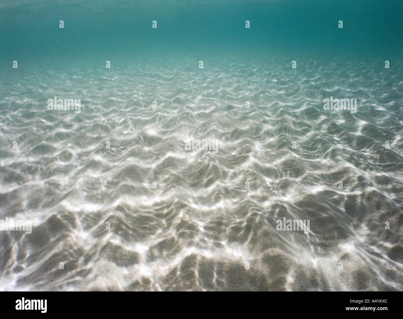 Sott'acqua Immagini Stock